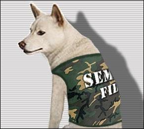 Semper Fido - Camo Dog Shirt