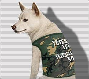 Veterans Yes, Veterinarians No - Camo Dog Shirt